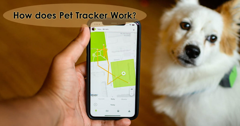How does pet tracker work Image